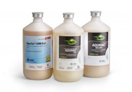 AquaVac Group